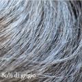 fip castano con ottanta per cento di grigio