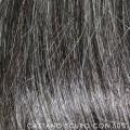 fip castano scuro con cinquanta per cento di grigio