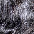 fip castano scuro quaranta per cento grigio