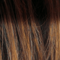 nocciola-con-effetto-finta-ricrescita-hazelnut-rooted